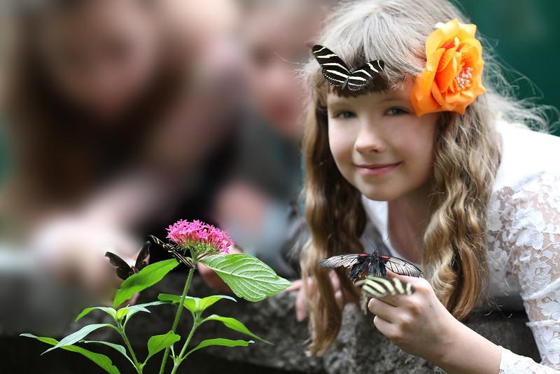 Girls and Buterflies